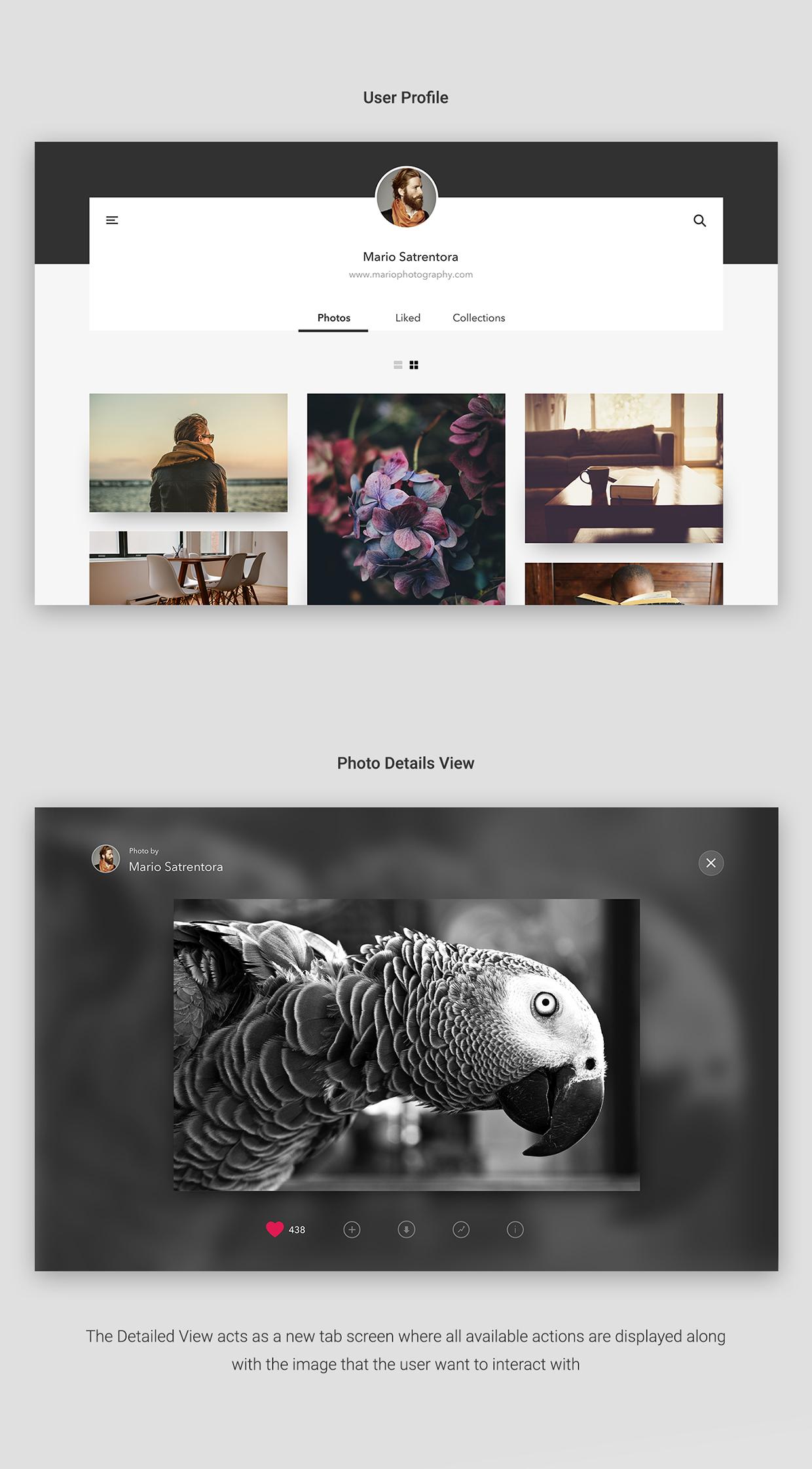 unsplash website design2